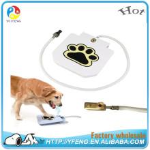 Novos produtos inovadores Dog Dog Water Fountain