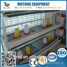 Chinas zuverlässigster Lieferant von Hühnerfuttertrögen