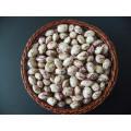 Hot -Selling 2017 New Crop Light Speckled Kidney Beans Lskb