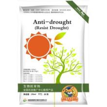 Soins et nutrition de cultures anti-sécheresse