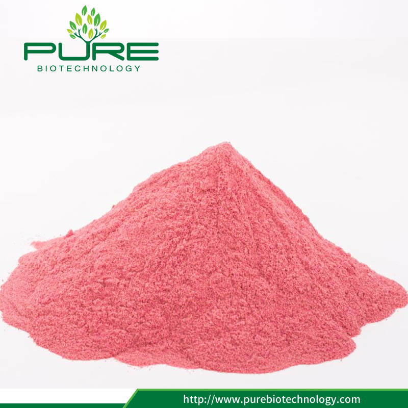 High Quality Cranberry juice powder
