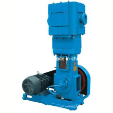 Oil-Less Piston Vacuum Pump (WLW)