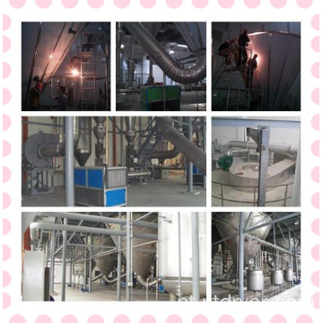 Andrographis paniculata Extrato Spray Dryer
