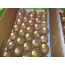 Fruits frais aux kiwis à vendre