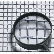 Stainless Steel Crimped Wire Mesh,Barbuce Mesh