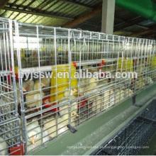 Fornecedores de gaiolas de frangos de frango de alta qualidade na China