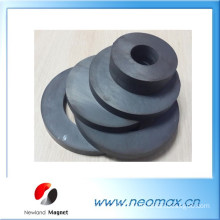 Ring ferrite magnet for water pump