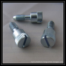 Slotted Bolt (M2-M64)