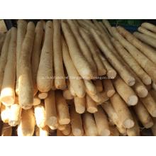 New Crop Fresh Chinese Yam BRC/FDA