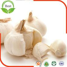 6,5 centímetros de alho normal branco puro da China