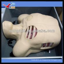 Maniquí de Drenaje Pleural ISO, Descompresión de Pneumotórax, modelo de drenaje de toracocentesis