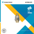 Rongpeng RP8055 Mini Lubrificador