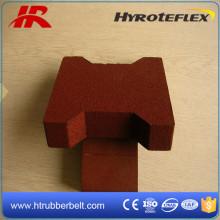 20cm X16 cm (longitud / anchura) gimnasia hueso de perro forma de goma azulejos de piso