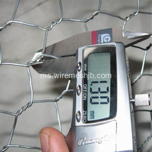 Electro Galvanized Hexagonal Wire Nettings