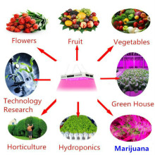Dimmable Full Spectrum LED Plant Grow Lights