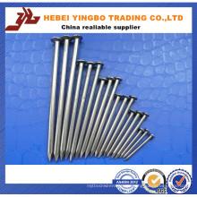 Nagel-Fabrik für allgemeine Nagel-Zaun-Nägel