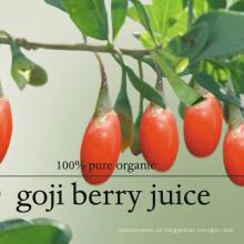 Venda quente chinês fruta wolfberry