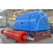 Statyczny SCR Excitation Turbo Genetator