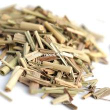 Резаная лимонная трава