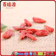 Order goji berries goji berry como tomar the goji berry