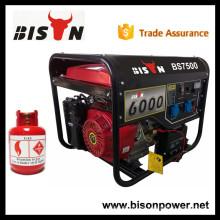 BISON (CHINA) Generador de LPG de Oro Power 6.5kva con Mejor Precio