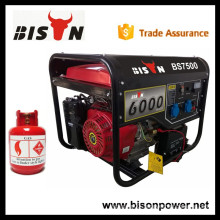 BISON(CHINA)Golden Power 6.5kva LPG Generator with Best Price