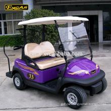 48V 2 seater Trojan battery electric golf buggy car custom mini golf cart for sale