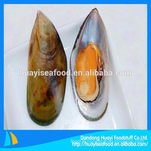 frozen half shell mussel new landing nice quality seafood