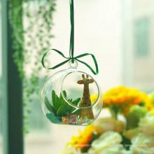 Criativo artesanal planta pendurado vidro