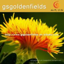 cártamo de flor de cártamo Fabricante