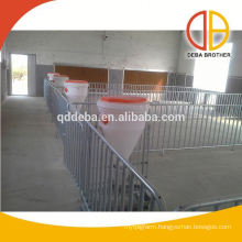 Poultry equipment pig farm galvanized pipe fatten crate