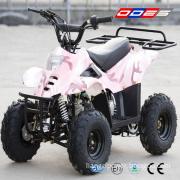 110cc ATV Quad for Kids