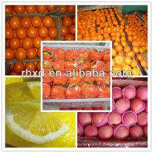liste des fruits frais agrumes jaunes