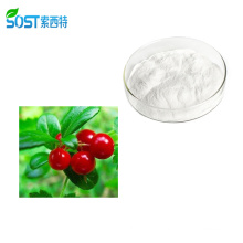 Wholesale 100% pure alpha arbutin powder