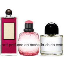 OEM Service Customized Perfume and Glass Perfume