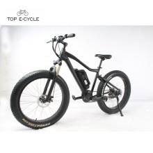 Livelytrip, der billiges fetten Reifenschnee mountaion elektrisches Fahrrad fährt
