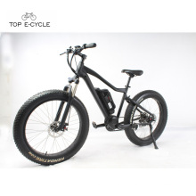 Livelytrip riding cheap fat tire snow mountaion electric bike