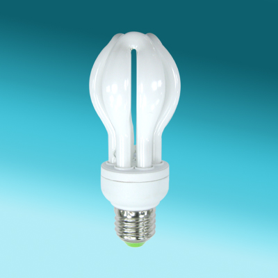 Small Lotus energy efficient light bulbs