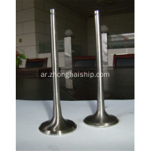Marine MWM TBD501-6E Spare Parts Engine Valve