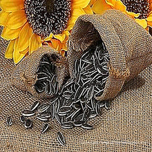 Hot best-selling sunflower seeds in Inner Mongolia