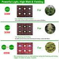 Комнатные растения со светодиодной лампой для выращивания полного спектра