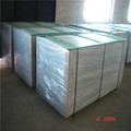 Plastic Coated Double Wire Panel