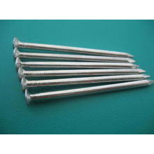 China Supplier Common Nail for Building Material