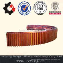 Made In China High Quality Trunnion Gear