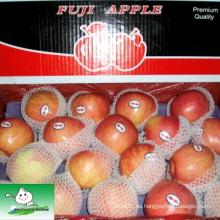 Shandong fuji Apfel
