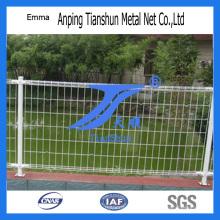 Сваренная Загородка ячеистой сети (ТС-E148)