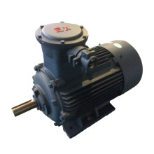 Three Phase AC Electric Motor for Raliway Industry