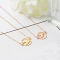 Großhandelsfrauen-Schmuck-Edelstahl-Halsband die Tierkreis-Fisch-Halskette