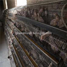Battery Quail Cage Good Price