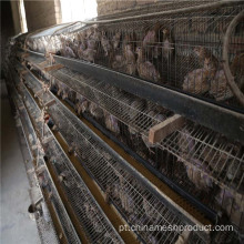 Cheap 6 Tiers QuailLayer Cages / Quail Farm Sales